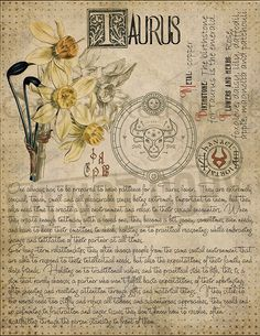7 pages set about TAURUS Astrological Sign Correspondences. They are an ideal addition to your own Wicca Book of Shadows. Magic Herbs, Herbal Magic, Astrology Zodiac, Astrology Signs, Astrological Sign, Astrology Numerology, Numerology Chart, Tarot, Grimoire Book