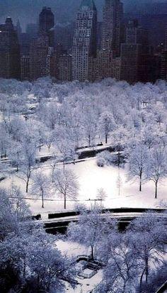 Ruth Orkin New York- Central Park Winter Central Park, New York Noel, Places To Travel, Places To See, New York City, Winter Szenen, Winter White, Ville New York, Jolie Photo