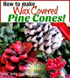 How to make beautiful wax covered pine cones!