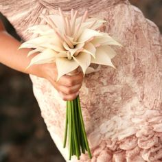 Pale pink tulip anthurium bouquet - Flowers by Heidi, Four Seasons Resort Hualalai Weddings