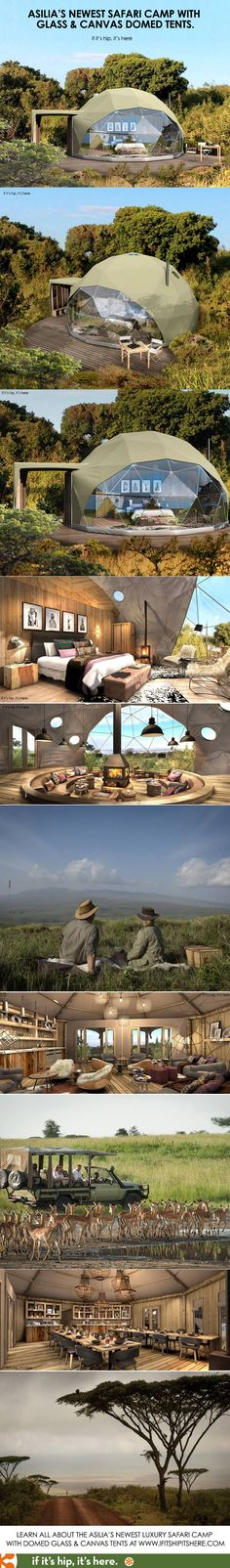 Now, THIS is the way to Safari! learn more at http://www.ifitshipitshere.com/the-highlands-ngorongoro/