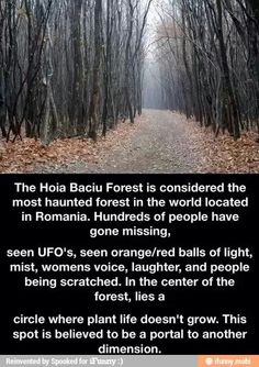 Hoia Baciu Forest, Romania...13 Scariest Places on Earth. Read more on our blog here: http://www.sunmaster.co.uk/blog/13-scariest-places-earth/