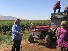 WINE and WAR - Documentary on Winemaking in Lebanon During Wartime Sets October Release Date | VIMOOZ