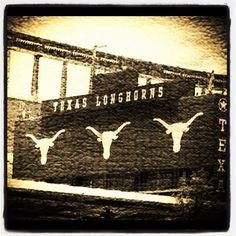 Because Texas Exes are globally respected: a powerful and engaging alumni network. Longhorns Football, Texas Longhorns, Hook Em Horns, Texas Forever, University Of Texas, Texans, Dallas Cowboys, Texas Things, Adventure