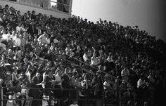Austin College- School Spirit for a Football Game
