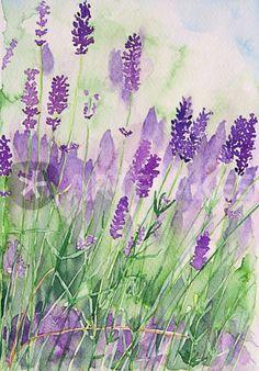 Lovely watercolour!! I love lavender!