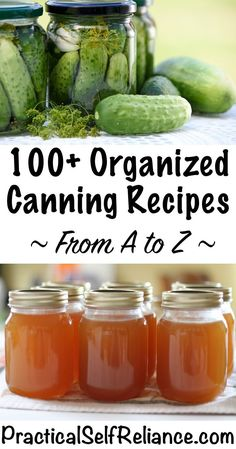 Sacred Really Like - 22 Solutions That Should Change The Tide In Your Daily Life Along With The Lives Of Any Individual How To Can Everything 100 Canning Recipes For Organized From A To Z For Preserving The Harvest Home Canning Recipes, Canning Tips, Tomato Canning Recipes, Pressure Canning Recipes, Canning Soup, Canning Pears, Canning Labels, Canning Food Preservation, Preserving Food