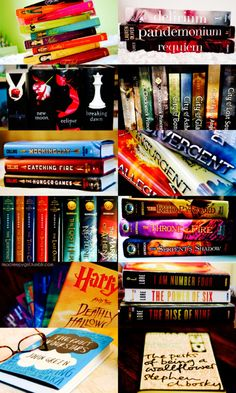 Pretty Little Liars - Delirium - Twilight - The Mortal Instruments - The Hunger Games - Divergent - Percy Jackson - The Kane Chronicles - Harry Potter - The Lorien Legacies - The Fault In Our Stars - The Perks of Being a Wallflower