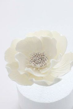 white flower for wedding cake Sharon Wee  https://www.facebook.com/Weelovebaking