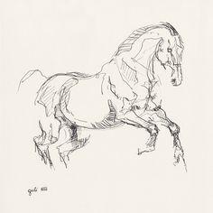 Horse Drawings, Animal Drawings, Art Drawings, Animal Sketches, Drawing Sketches, Horse Sketch, Horse Illustration, Horse Artwork, Equine Art