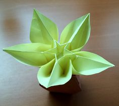 Origami plumeria