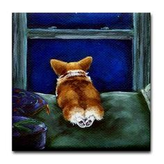 """""""Star light, star bright, first star I see tonight . . . What does your CORGI wish for?????"""