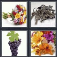 4 Pics 1 Word Bouquet of flowers. Pile of keys. Bunch of grapes. Flower arrangement. Find the answers. Here you have the word you are looking for: