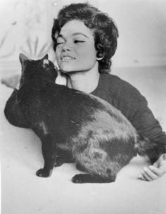 Net Image: Eartha Kitt: Eartha Kitt Photo ID: . Picture of Eartha Kitt - Latest Eartha Kitt Photo. Crazy Cat Lady, Crazy Cats, Celebrities With Cats, Celebs, Vintage Black Glamour, Cat People, Actors, Cool Cats, Cats And Kittens