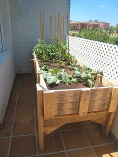 Raised vegetable garden to build yourself to grow vegetables on the balcony Fruit Garden, Edible Garden, Herb Garden, Garden Trellis, Garden Planters, Garden Beds, Rooftop Garden, Indoor Garden, Raised Vegetable Gardens