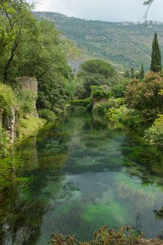 Giardino di Ninfa (Garden of nymph) - Cisterna di Latina (LT) - Italy