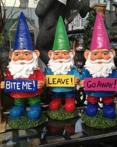 How cute!I need these guys for my Gnome Garden Funny Gnomes, Baumgarten, Gnome House, Gnome Garden, Garden Inspiration, Garden Ideas, Garden Fun, Backyard Ideas, Yard Art