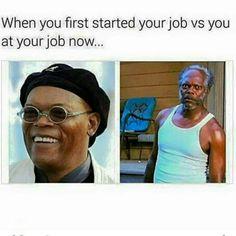 Job Humor, Nurse Humor, Medical Humor, Dental Humor, Ecards Humor, Life Humor, Memes Humor, Work Memes, Work Quotes