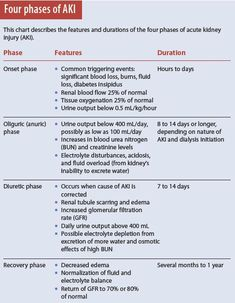 Four phases of AKI (Acute Kidney Injury) . . . . . . . . . . nursing student, medical, doctor, RN, NP, PA, MD, DO.