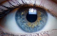 """Cytokine """"Cocktail"""" Lowers Risk of Corneal Graft Rejection"""