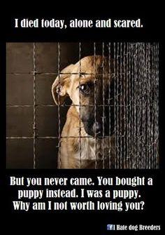 Heartbreaking! :(