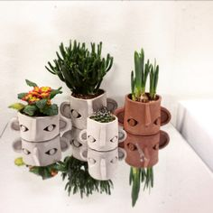 peonygent:  made some lil plant pot head guys to go with my...
