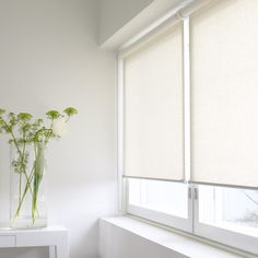 Gorgeous shades for the whole place instead of roman blinds - need some Scandinavian interior design!