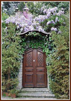Door With Wisteria Vine