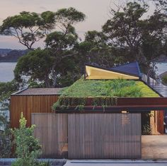 Vo Trong Nghia Architects Is Designing For Change Jackfruit Tree, Australian Architecture, Architect Design, The Locals, Beach House, The Neighbourhood, National Parks, Sweet Home, Landscape