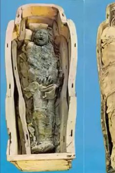 Egyptian Mummies, Layers, Lion Sculpture, Layering