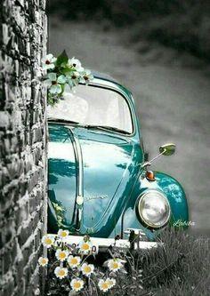 Vw Vintage, Cute Cars, Jolie Photo, Vw Beetles, Old Cars, Retro, Cute Wallpapers, Color Splash, Fashion Photography