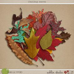 (fall)ing leaves by Sahlin Studio