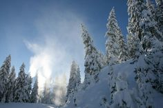 Tief verschneiter Wald - Kappl Mount Everest, Mountains, Nature, Travel, Outdoor, Paisajes, Hiking, Woodland Forest, Voyage