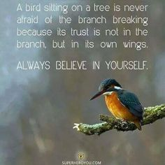 A bird sitting on a tree is not affraid of the branch breaking because its TRUST is not in the branch! Trust in God FIRST