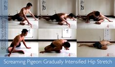 """Continuing with the Stretching for Beginners, this is stretch 2, """"Screaming pigeon."""" http://bit.ly/screamingpigeonbeginners"""