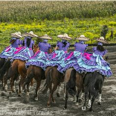 With grey instead of blue Mexican Rodeo, Mexican Style, Vestido Charro, Mexicans, Great Memories, Wyoming, Traditional Outfits, Cowboys, Horses