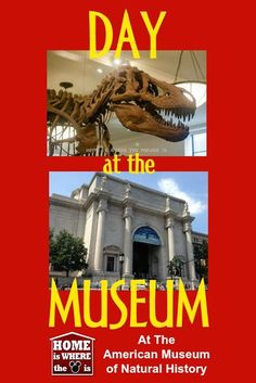 The highlight of any trip to NYC with kids is a visit to the American Museum of Natural History. Here are some great tips on how to plan your day.