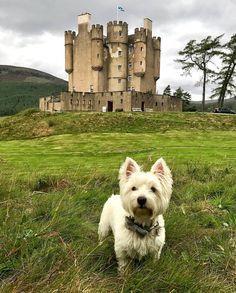 Braemar Castle, Aberdeenshire, Scotland ~ • Instagram photos and videos