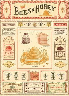 Vintage Bee, Vintage School, Vintage Style, Vintage Labels, Vintage Ephemera, Honey Wrap, Honey For Sale, Honey Label, Honey Bee Hives