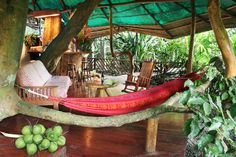 Tree House Resort in Costa Rica.  It can accommodate up to 6 guests on its two levels of living (and playing) space, which includes a master bedroom with queen-size bed, a second bedroom, kitchen, and a shower that seems to flow directly from a mammoth Sangrillo tree. WHOA!!!!!