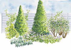 Peittävä kasviryhmä auttaa meluaidan, parkkipaikan tai muuten ankean näkymän piilottamisessa. Tutustu Viherpihan istutussuunnitelmaan ja istuta peittäviä puita, pensaita ja köynnöksiä. Backyard Plan, Corner Garden, Contemporary Garden, Autumn Garden, Garden Planning, Garden Inspiration, Garden Ideas, Cactus Plants, Garden Landscaping
