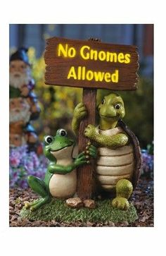 Lighted Gnome Sign Turtle Frog Garden Statue Outdoor Lawn Ornament Yard Decor