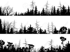 Set Of Vector Horizontal Silhouettes Coniferous Treetops Forest ...