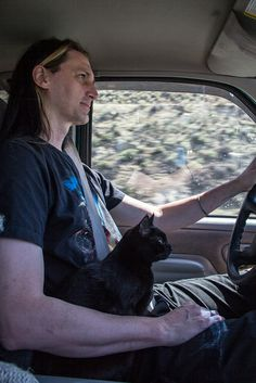 Pilot, Co-Pilot | Traveling with cats doesn't have to stuck.