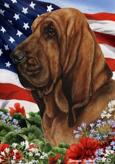 Indoor/Outdoor flags are 28 x 40 and are made from 2 pieces of fabric sewn back to back to withstand even the most severe weather. Flag is 28 x 40 Made in USA Vibrant Colors Made from Polypoplyn for all-weather use Guaranteed against fading for 3 years Horses And Dogs, Animals And Pets, Bloodhound Puppies, Dog Garden, Swiss Mountain Dogs, Puppy Treats, Brussels Griffon, Bassett Hound, Dog Crafts