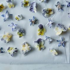 Borage flowers (the star-shaped ones) and tiny pansies both make for extremely cute cake decor.