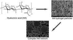 hydrogels for biomedical applications