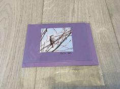 Foto kort Birds, Cover, Slipcovers, Blankets