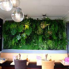 mur végétal chez soi - Marie Claire Maison
