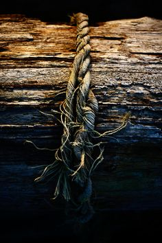 Old Wood and Rope
